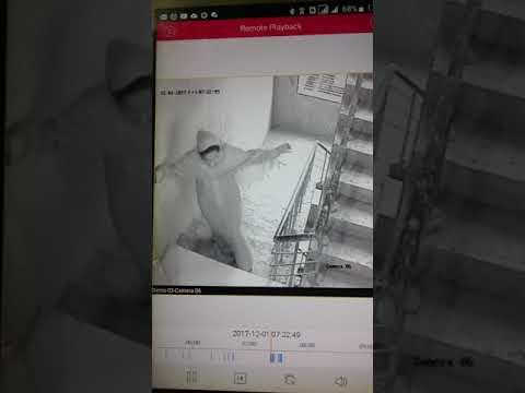 Lady thief - Bogra Be aware