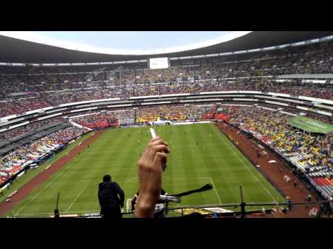 """La REBEL, dale pumas dale dale oh"" Barra: La Rebel • Club: Pumas"