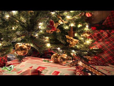 Silent Night   Instrumental Christmas Music   Christmas Song