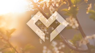 [LYRICS] Finding Hope & Deverano - Decisions