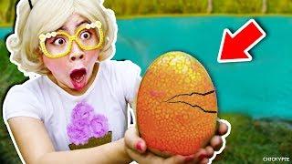 เจอไข่สัตว์ประหลาดในสระน้ำ 👾😳 ชิคกี้พาย