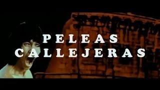 Peleas Callejeras (Bruce Le, Bolo Yeung)