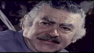 Bal Peteği & Nikahsızlar - Türk Filmi (1979)