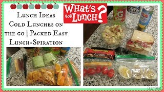 What's For Lunch? Cold packed Lunch Ideas for School, Work, or on the Go