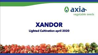 Xandor 2020 2