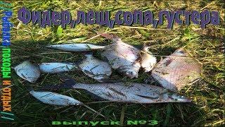 Рыбалка леща на мокше
