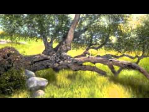 WISH I WAS (WILLOW TREE)