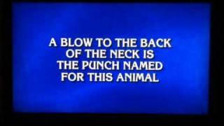 Donkey punch kid on Jeopardy!