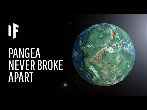 What Life Would be Like on Pangea