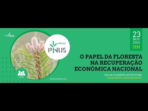 """Webinar """"O Papel da Floresta na Recuperação Económica Nacional"""""""