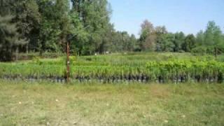 preview picture of video 'Visita la Reserva de La Florida - Tucumán'
