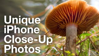 iPhone Close-Up Photography Secrets – iPhone Landscape Mastery