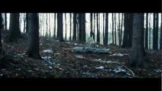 Video Perseus - Hraběnka Báthoryová (2012)