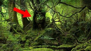 Most MYSTERIOUS South American Legends!