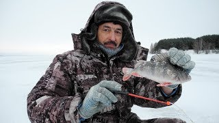 Рыбалка на мормышку без насадки