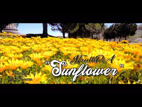 "JTruthPA - ""Sunflower"""