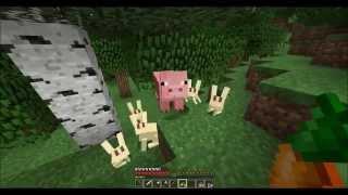 The Stolen Anvil 8 (Minecraft SMP)
