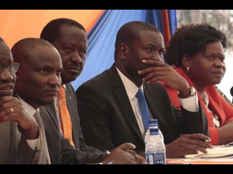Raila Odinga meets Jubilee, KANU and ODM youth