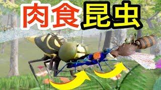 まさに弱肉強食!ハチ食べてたらトンボに食われる『ハンミョウ』という肉食昆虫を体験DrunkonNectar実況