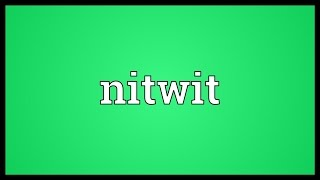 Nitwit Meaning