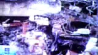 Sari Msh Hidup Stlh 40 Jam Tertimbun Gempa Padang