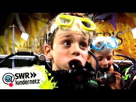 Unterwasser und auf dem Bauernhof (Folge 6) | 4 Viertel – Meine Gegend rockt! | SWR Kindernetz