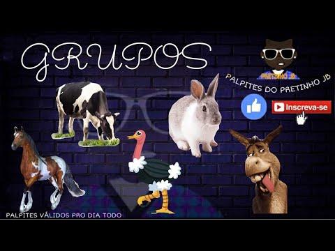 Palpites Pretinho Jb 10/03/2021 Quarta-Feira