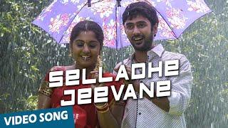 Selladhe Jeevane  SPBalasubramaniam, Chitra
