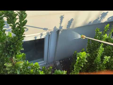 Crack in Basement Window Causes Interior Ant Infestation in Rumson, NJ