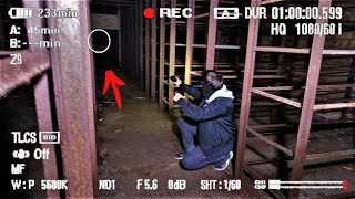 Мутанты Чернобыля. Проникли в заброшенный архив. Нашли следы когтей