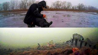 Зимняя рыбалка.вид из подо льда