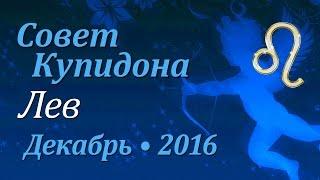 Лев, совет Купидона на декабрь 2016. Любовный гороскоп.
