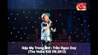 Gặp Mẹ Trong Mơ - Trần Ngọc Duy (The Voice Kid VN 2013)