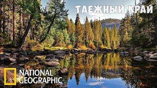 Дикая природа России: Таёжный край | Фильм 5 из 6 | (National Geographic)