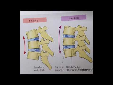 Arthrose, Arthritis des Knies ICD-10 Code