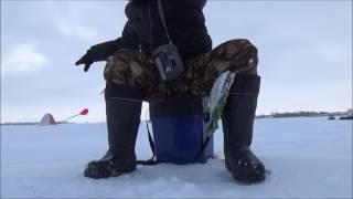 Рыбалка в завьяловском районе алтайский край