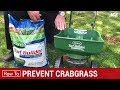 How To Prevent Crabsgrass - Ace Hardware