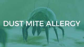 Dust Mite Allergy: Symptoms And Treatments