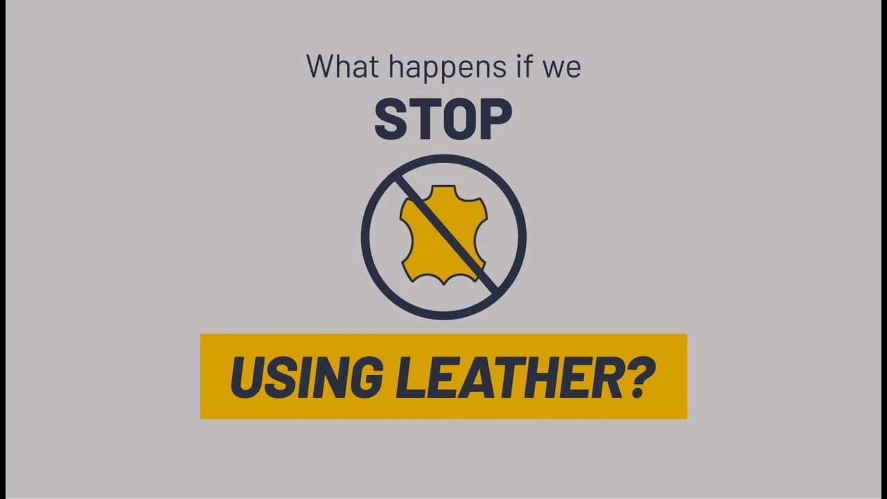 What happens if we stop using leather? Let's do the math!
