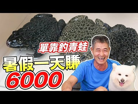 單靠釣青蛙,暑假一天賺6000元