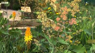 The bees Garden - BBC - Monty Don