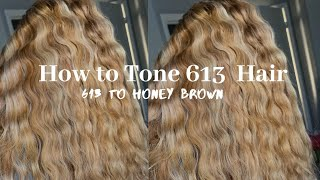 How To: Tone 613 To Honey Brown|Ft Highlights| 613 To Honey Brown