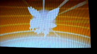 Braviary  - (Pokémon) - shiny rufflet evolving into shiny braviary!