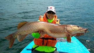 Байкальская рыбалка на щуку