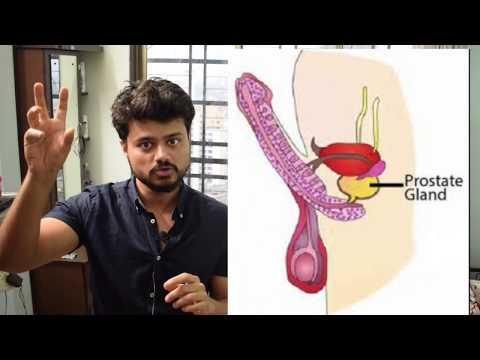 How is rectal ultrasound of the prostate
