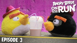 Angry Birds On The Run | Baby's Shaky Ride   S1 Ep3