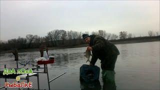 Отчеты о рыбалках на москве реке