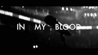 SHAWN MENDES    IN MY BLOOD  KARAOKE VERSION
