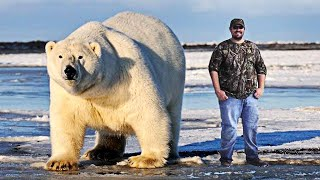 10 Strongest Animals In The World