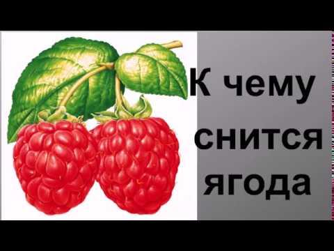 К чему снятся ягоды Сонник от Ирины